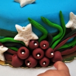 Idil_2yas_pasta_yosunlar_2